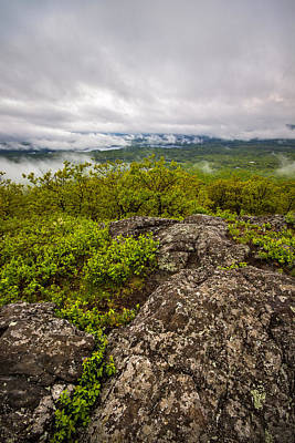 Photograph - Mt. Roberts Vista by Robert Clifford