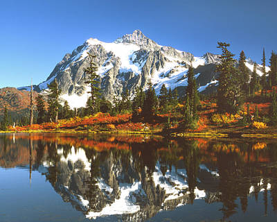 Mt Shuksan Art Print by King Wu
