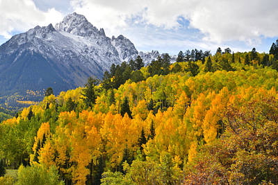 Photograph - Mt. Sneffels Alpine Aspens by Ray Mathis
