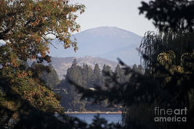 Photograph - Mt Spokane by Terri Thompson