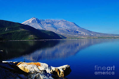 Birds Rights Managed Images - Mt St Helens Reflecting Into Spirit Lake   Royalty-Free Image by Jeff Swan