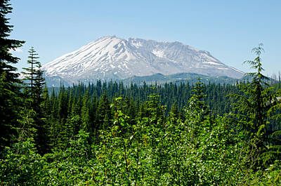 Photograph - Mt. St. Hellens by Tikvah's Hope