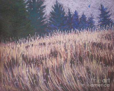 Mt. Tabor Contrasts Art Print by Suzanne McKay