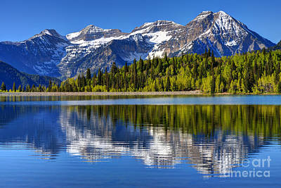 Mountain Royalty-Free and Rights-Managed Images - Mt. Timpanogos Reflected in Silver Flat Reservoir - Utah by Gary Whitton