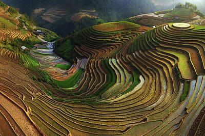 Rice Wall Art - Photograph - Mu Cang Chai - Vietnam by ??o T?n Ph?t