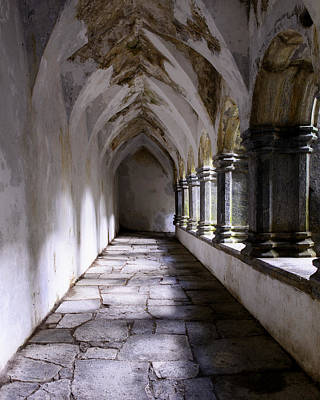 Photograph - Muckross Abby Cloister Killarney  Ireland by Dick Wood