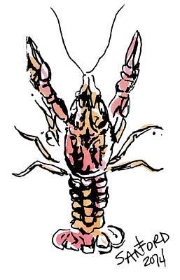 Spiers Drawing - Mud Bug by Amanda  Sanford