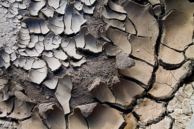 Photograph - Mud Cracks by Jim McCain