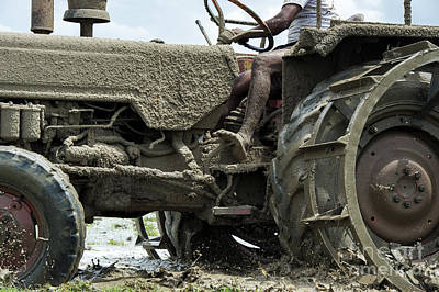 Ploughed Photograph - Mud by Tim Gainey