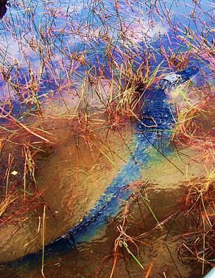 Caravaggio - Muddied Water by Chuck Hicks