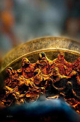 Photograph - Muddy Rusty Sprockets by Bob Orsillo