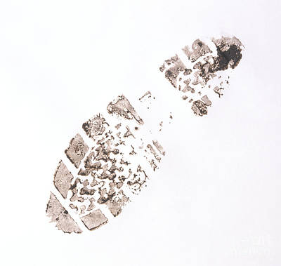 Photograph - Muddy Shoe Print by Andy Crawford / Dorling Kindersley