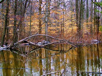 Photograph - Muddy Waters by Scott B Bennett