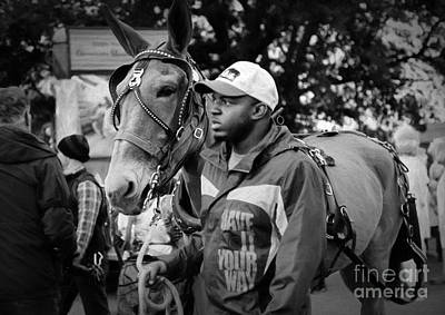Photograph - Mule And Handler - Krewe Du Vieux by Kathleen K Parker