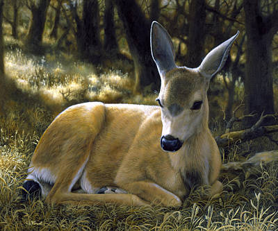 Mule Deer Fawn Painting - Mule Deer Fawn - A Quiet Place by Crista Forest
