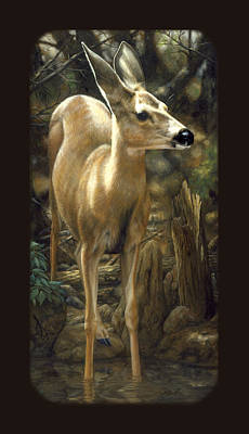 Mule Deer Fawn Painting - Mule Deer Fawn Phone Case by Crista Forest