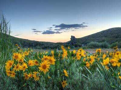 Photograph - Mule's Ears Sunset by Jenessa Rahn