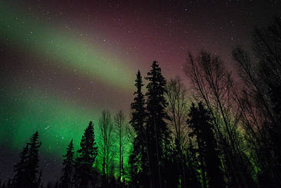 Photograph - Colorful Aurora by Roger Clifford