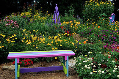 Multi Colored Photograph - Multi-colored Bench, Obelisk by Panoramic Images