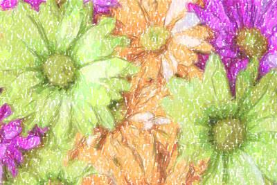 Digital Art - Multi Colored Daisies In Color Pencil by Jill Lang