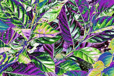 Multi Colored Foliage Art Print by Linda Phelps