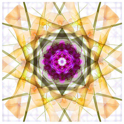 Abstract Flowers Royalty-Free and Rights-Managed Images - Multi Flower Abstract by Mike McGlothlen