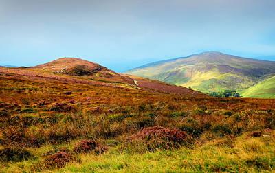 Best Irish Photograph - Multicolored Hills Of Wicklow I. Ireland by Jenny Rainbow