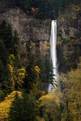 Photograph - Multnomah Falls by Brian Bonham