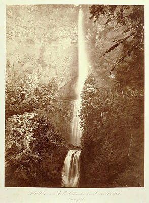 Oregon Drawing - Multnomah Falls, Columbia River, Oregon by Litz Collection