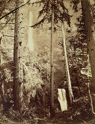 Oregon Drawing - Multnomah Falls, Columbia River, Oregon  Multnomah Falls by Litz Collection