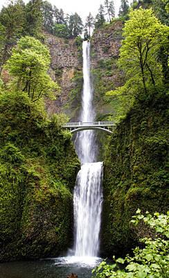 Photograph - Multnomah Falls by Steve McKinzie