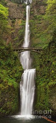 Photograph - Multnomah Falls by Stuart Gordon