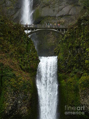 Photograph - Multnomah Falls by Susan Garren