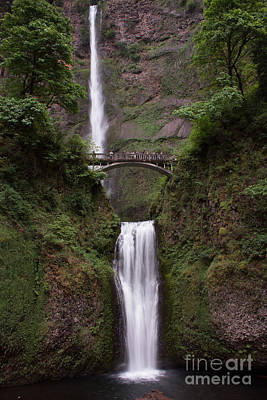 Photograph - Multnomah Falls by Suzanne Luft