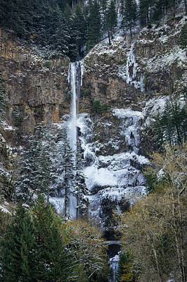 Photograph - Multnomah Icicles by Brian Bonham