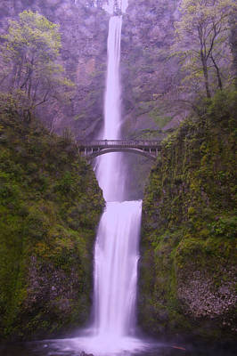 Multnomah In The Drizzling Rain Art Print by Jeff Swan