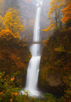 Of Autumn Photograph - Multnomah Morning by Darren  White