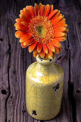 Gerbera Daisy Photograph - Mum In Yellow Vase by Garry Gay