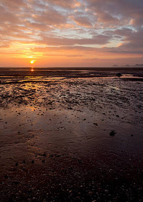 Photograph - Mumbles Sunrise Vertical by Paul Cowan