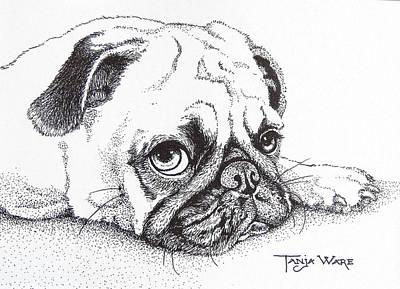 Drawing - Mumbles by Tanja Ware