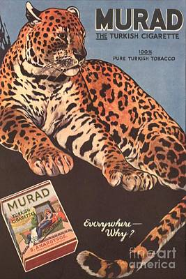 Nineteen-tens Drawing - Murad 1910s Usa Cigarettes Smoking by The Advertising Archives