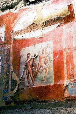 Mural Photograph - Mural In Herculaneum. by Mark Williamson/science Photo Library