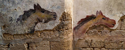 Building Feature Photograph - Mural Of Animal On Wall, Acre Akko by Panoramic Images