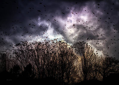 Crows Photograph - Murder Once A Year by Bob Orsillo