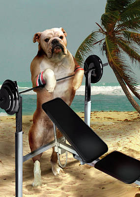 Dog On Beach Wall Art - Painting - Muscle Boy Boxer Lifting Weights by Regina Femrite