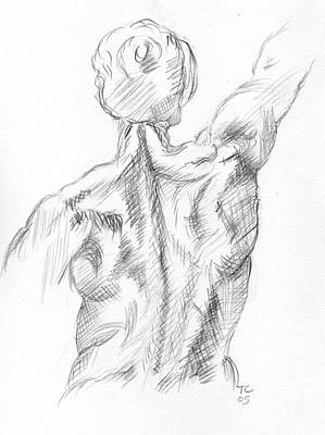 Drawing - Muscular Back by Tamyra Crossley