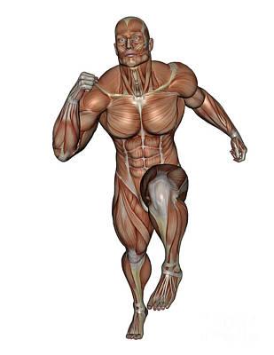 Rectus Abdominis Digital Art - Muscular Man Running by Elena Duvernay