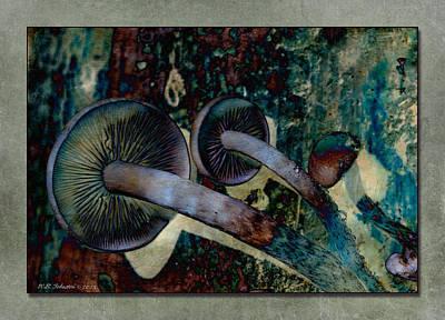 Photograph - Mushroom 4 by WB Johnston