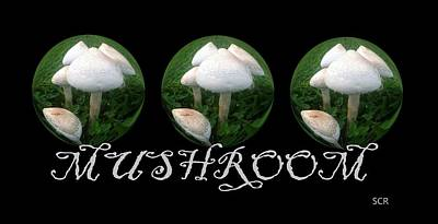 Mushroom Art Collection 2 By Saribelle Rodriguez Art Print