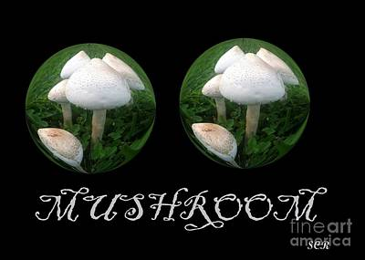 Art Print featuring the photograph Mushroom Art Collection 3 By Saribelle Rodriguez by Saribelle Rodriguez